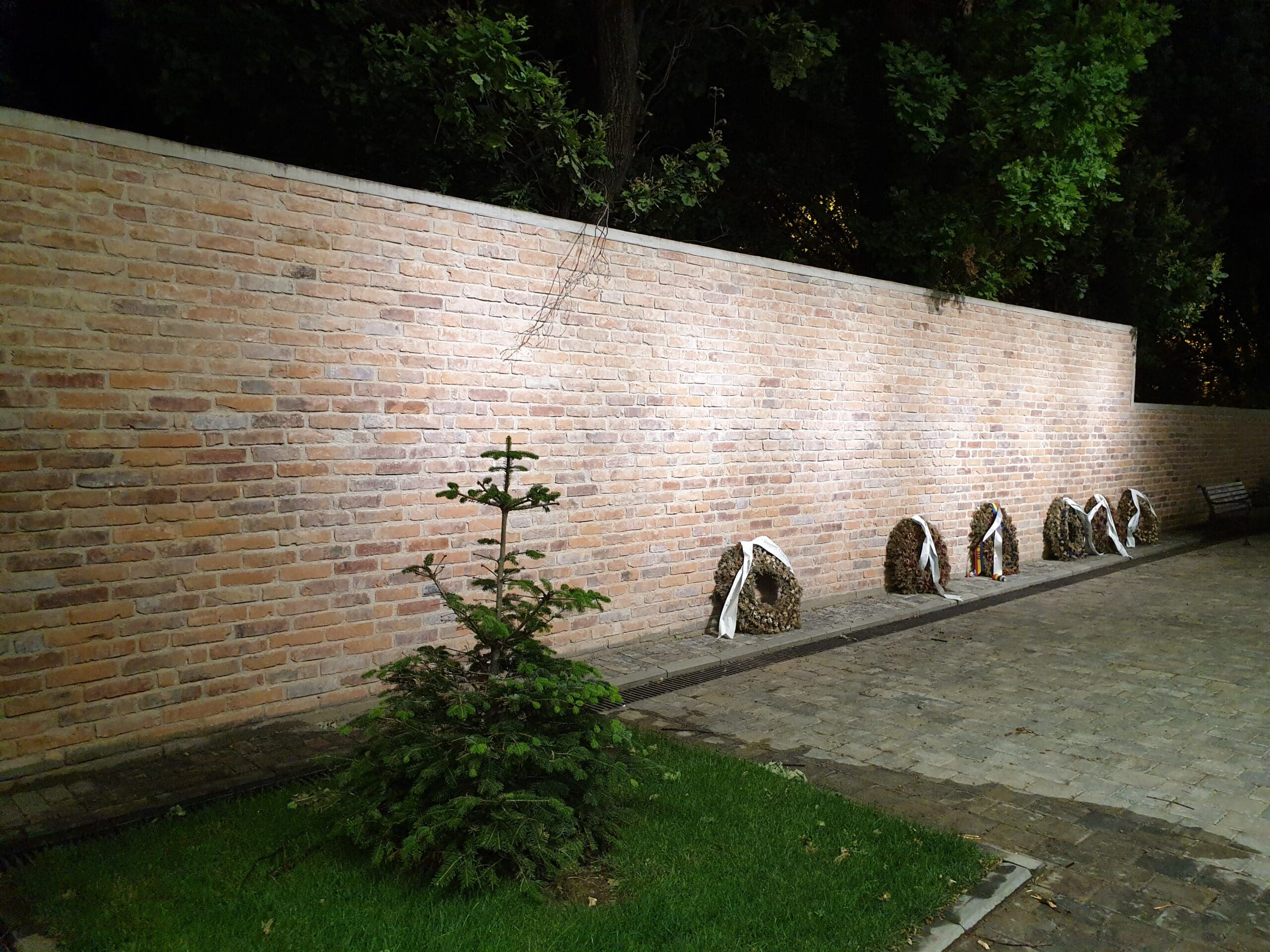 Zidul Chesturii din Iasi